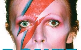 Bowie-Unzipped